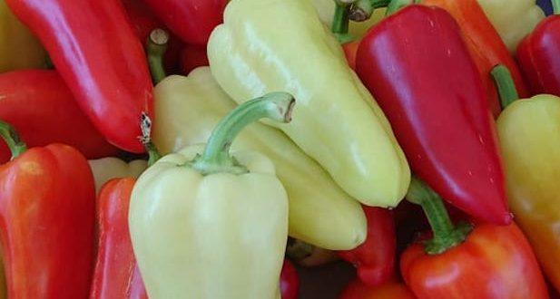 Hungarian Wax Pepers